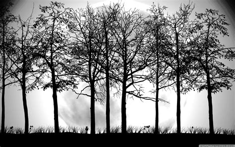 wallpaper black and white trees tree black and white wallpapers 4340 amazing wallpaperz