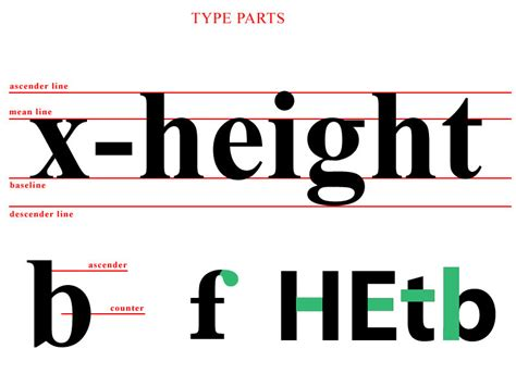 typography descender terminology terminology