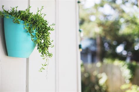 Outdoor party wall planters