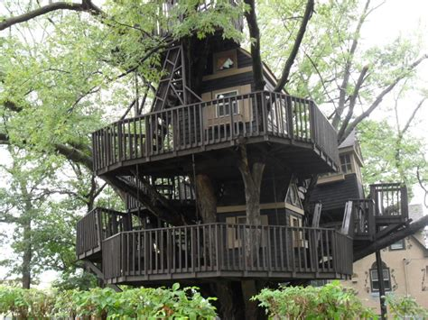 coolest treehouses 10 kid s treehouses that are taking quot cool quot to a whole new