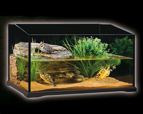 vasche per tartarughe d acqua vasca per tartarughine d acqua dolce