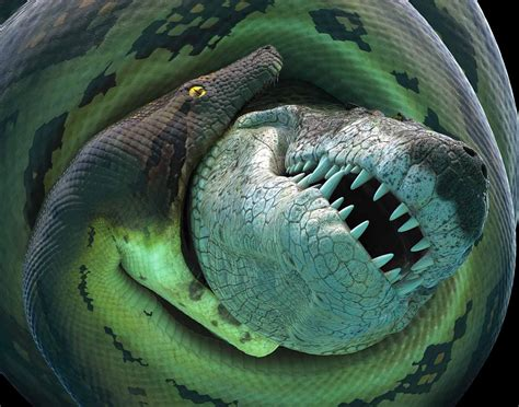 film ular boa titanoboa is coming to cus nebraska today