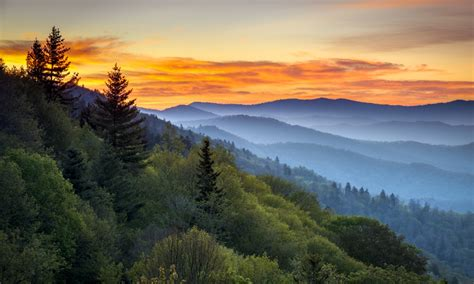 Great Smoky Mountain Getaways Great Smoky Mountain Wildlife Vacations Direct Supply
