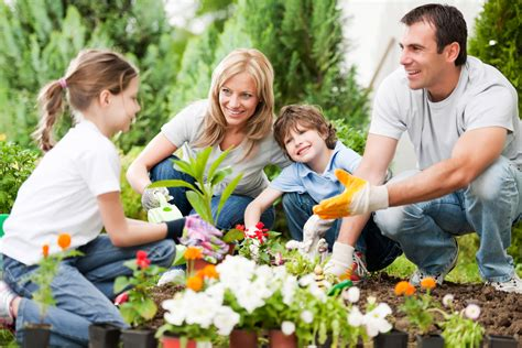 things to do this summer time without breaking the - Family Gardening