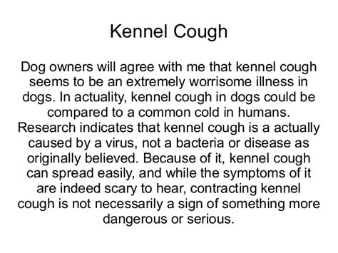 kennel cough remedies for kennel cough symptoms