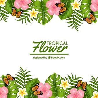 fiori con farfalle farfalle foto e vettori gratis