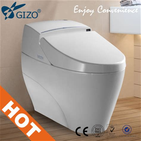 Toilet Built In Bidet by Automatic Toilet With Built In Bidet Smart Flush Toilet