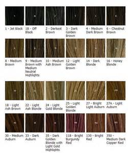ash hair color chart 17 best images about hair dye on ombre