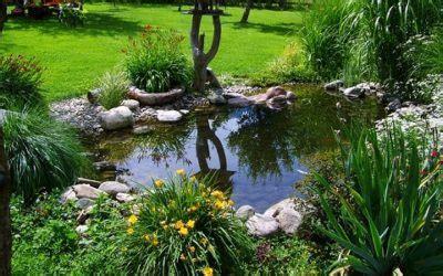 stagno giardino laghetto o stagno da giardino ecco come farlo