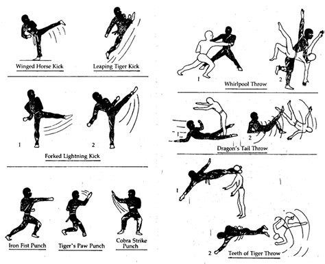 the fighting sword illustrated techniques and concepts books image gallery ninjutsu