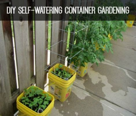 diy self watering herb garden 1000 images about how my garden grows on pinterest