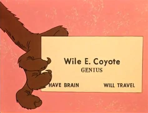 wile e coyote facts wile e coyote syndrome how business owners doom their