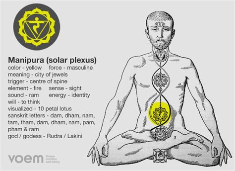 solar plexus chakra location an introduction to the human body s 7 primary psychic