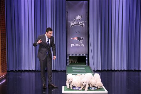 jimmy fallon puppy predictor liam payne ora perform quot for you quot on jimmy fallon s quot tonight show quot