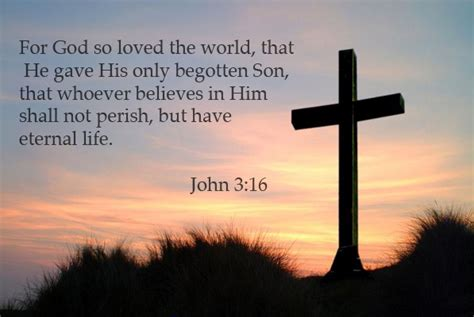 for god so loved the world for god so loved the world raising boys