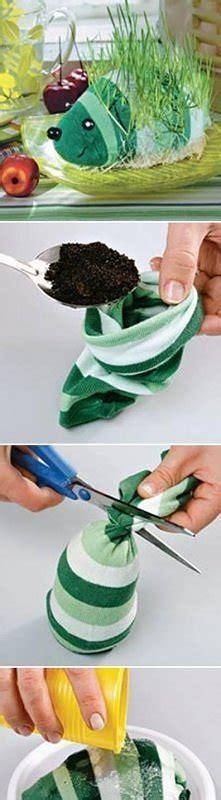 diy sock growing grass hedgehog pomysły tablica użytkownika wiolka79 na zszywka pl