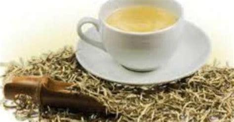 Teh Putih mbaheunik teh putih minuman alternatif penangkal kanker