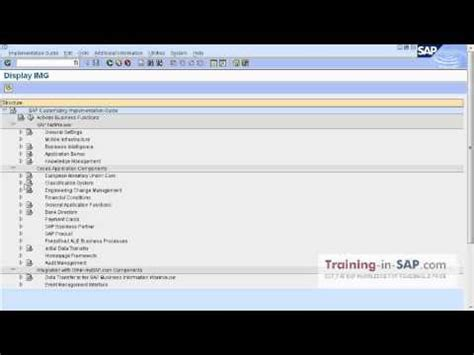 tutorial sap netweaver sap training how the sap netweaver spro and se93 look