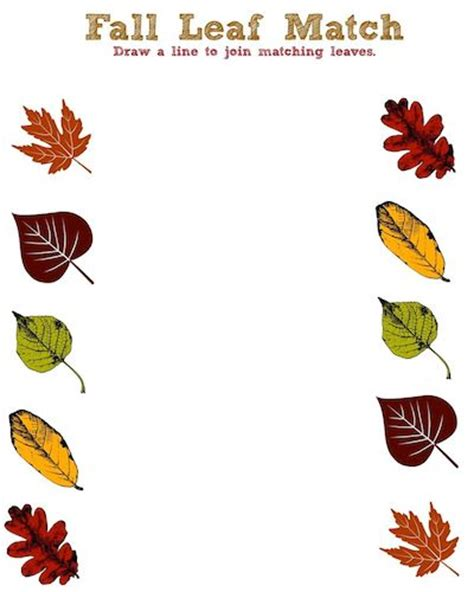 fall leaves printable activities fall leaf printable activity sheet leaf match jinxy kids