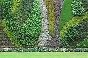 Best Plants For Vertical Gardens Vertical Garden History The Best Plants For Walls