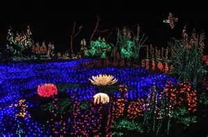 Garden D Lights by Bellevue Botanical Garden D Lights Fave Places In Greater Seattle A