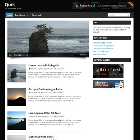blog themes in wordpress quik free blogging wordpress theme