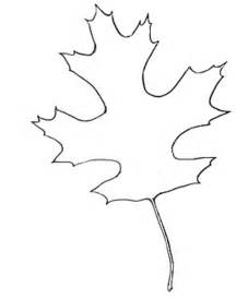 leaf template cut out autumn leaf outline cliparts co