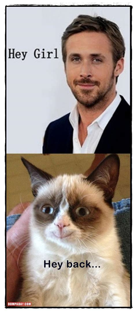 Grumpy Cat Meme Love - girl on fire grumpy cat memes
