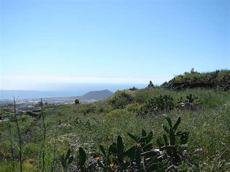 in vendita alle canarie tenerife finca terreno in vendita guimar tenerife isole canarie
