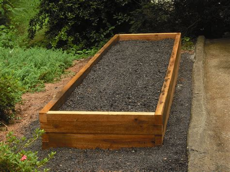 raised garden bed bugblitz