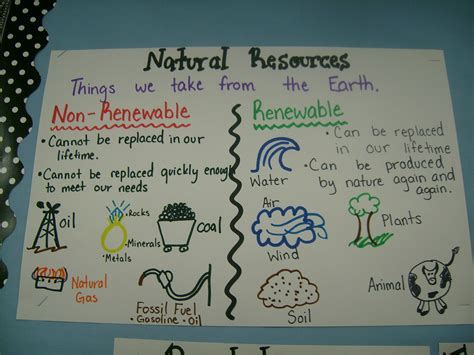 patterns in natural resources polygon anchor chart google search natural resources