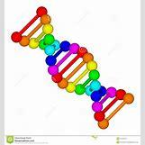 Biology Dna Clipart | 1300 x 1390 jpeg 225kB