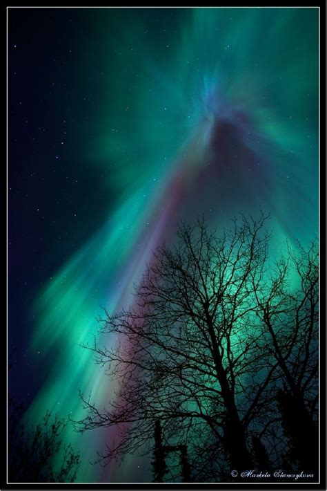 see northern lights in alaska 1000 images about quotes that i like on pinterest