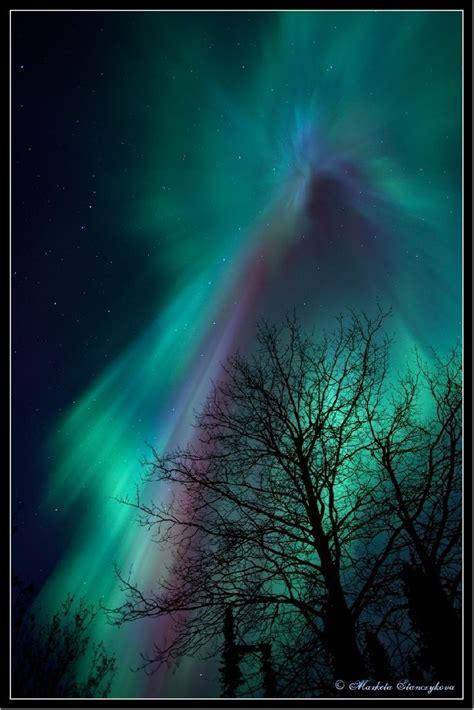 Fairbanks Northern Lights northern lights fairbanks alaska northern southern