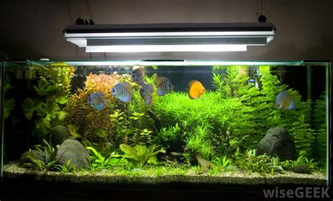 what is the difference between acrylic and glass aquariums