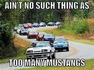 Fox Body Meme - 17 best ideas about fox body mustang on pinterest fox