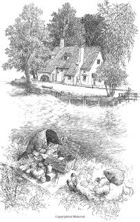 katie turner pdp: Wind in the Willows Research
