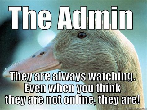 Admin Meme - admin duck quickmeme