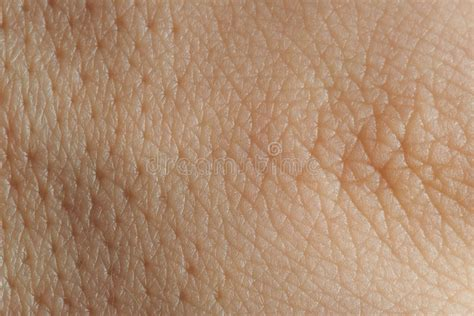 up texture of human skin with pores stock photo royalty free image 133633105 alamy texture of skin with pores stock image image of healthy 78664565