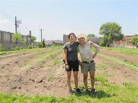 patchwork farms localharvest