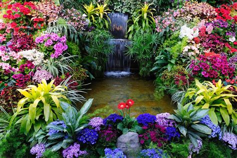 beautiful waterfalls with flowers 20 inspirational garden flower photos garden lovers club