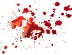 blut aus matratze entfernen blut aus kleidung entfernen so geht s