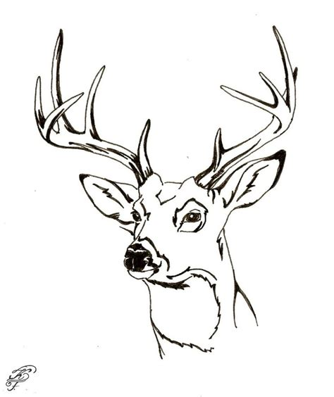 browning deer head coloring page www imgkid com the