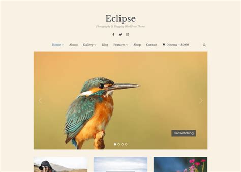 eclipse theme nulled 10 wordpress themes designed for photo galleries