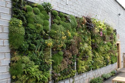 living wall diy vertical garden design decoration