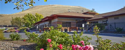 100 mountain view manor nursing home jsl green