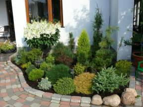 Patio House Compact Greenhouse Dwarf Conifer Landscaping Landscape Pinterest Dwarf
