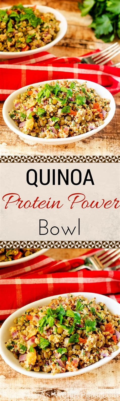 protein in quinoa best 25 quinoa protein ideas on quinoa fried