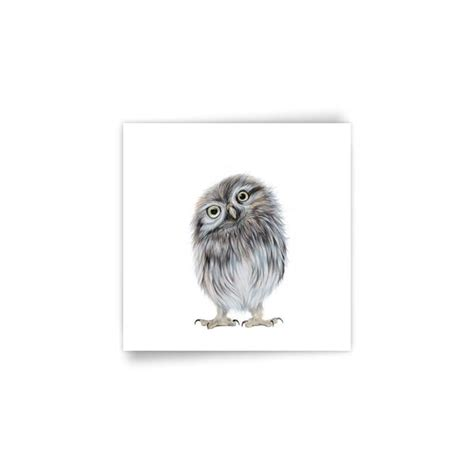 Owl Twit Daster Dewasa All Size harebell designs