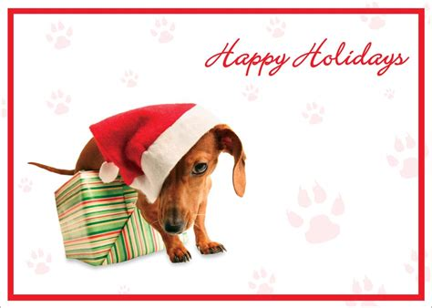 puppy cards happy holidays card dogs from cardsdirect